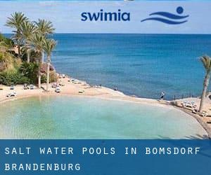 Salt Water Pools in Bomsdorf (Brandenburg)