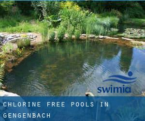 Chlorine Free Pools in Gengenbach