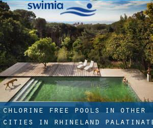 Chlorine Free Pools in Other Cities in Rhineland-Palatinate (Rhineland-Palatinate)