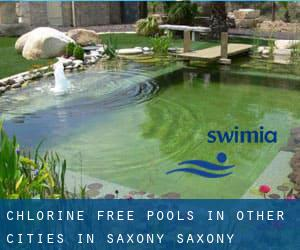 Chlorine Free Pools in Other Cities in Saxony (Saxony)